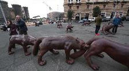 Napoli, vandali danneggiano l'installazione: il muso dei lupi girato al contrario