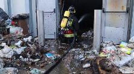 Incendio devasta il Maxi Zoo di Abbiategrasso