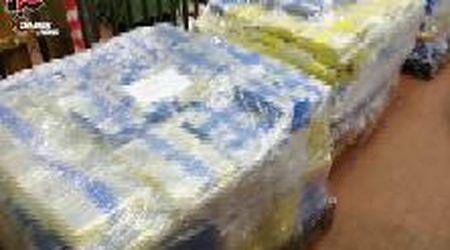 Livorno, ecco il super carico di cocaina sequestrato in porto