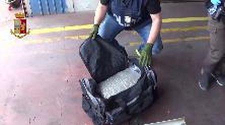 Scoperti 16 kg di marijuana nascosti in un Tir a Gorizia