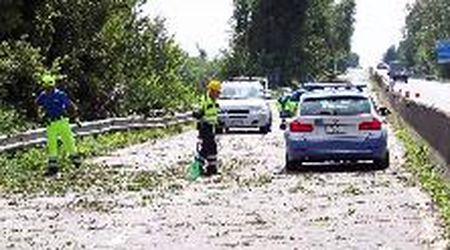 Maltempo, alberi caduti sulla Ferrara-mare: Super chiusa