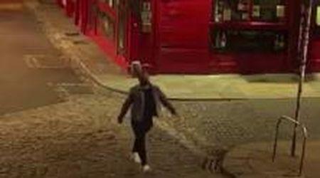 Dublino, la strada è deserta e l'uomo si finge modello: la sfilata ripresa dalle telecamere di sicurezza