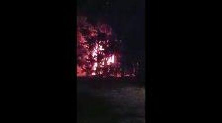 Porto Garibaldi, fiamme alla Collinara: camion distrutto dal rogo