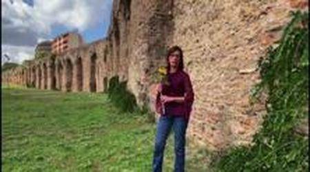 "Ilaria Cucchi: ""Piantate un fiore per Stefano: mandatemi i vostri video"""