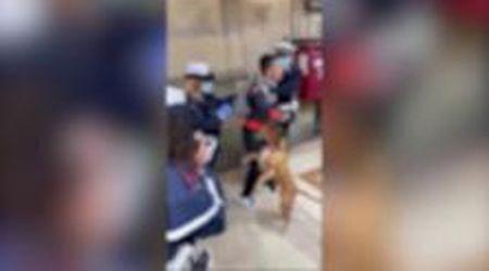 Firenze, i vigili insultati perché controllano una signora in giro senza mascherina