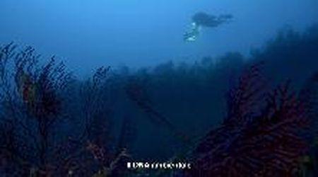 Il Mediterraneo al tempo del Covid - Episodio 5