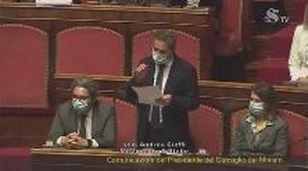 Fiducia a Conte, il senatore M5s Cioffi e la metafora del glucosio e della foglia: l'intervento è epico