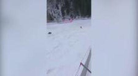 Romania, lo sciatore inseguito dall'orso sulla pista da sci
