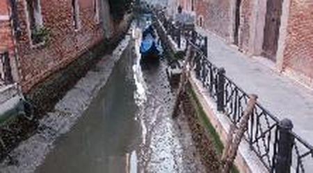 Venezia con l'acqua bassa: la marea insolita lascia i canali a secco