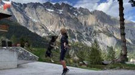 Coronavirus, la donna fa sport in casa e il cane impara a saltare la corda