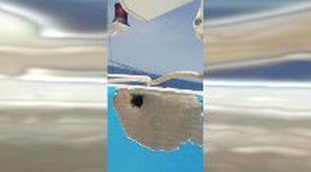 Libia, così si spara ai pescherecci italiani: il video dell'abbordaggio degli uomini di Haftar