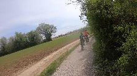 Alle sorgenti del Sile: la pedalata da Badoere e Treviso, tra aironi e mulini