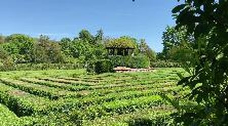 A spasso per... il giardino monumentali di Villa Barbarigo a Valsanzibio