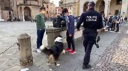 Padova, piazza Duomo blindata per il fine settimana dopo le risse