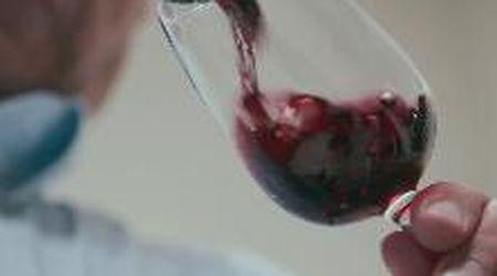 Vini alcol free, ecco come si fanno e chi li beve