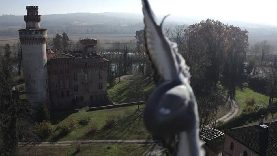 """Cuneo, il piccione """"abbatte"""" il drone: lo scontro epico in volo"""