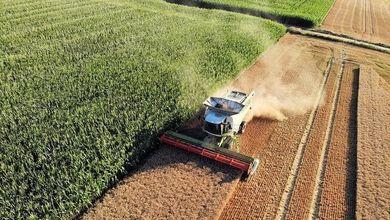 Il green deal fa flop, sfuma la riforma dell'agricoltura sostenibile