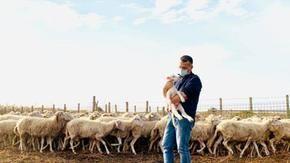 Il pastore si ammalò di Covid-19, il super sindaco che si prendeva cura del suo gregge di pecore
