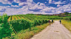 A piedi e in bici da Torino a Savona