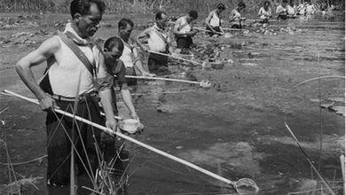 Quando la malaria uccideva in Sardegna
