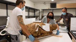 """Una delle più antiche mummie egizie di Torino in mostra a Bra dopo il restauro alla """"Venaria"""""""