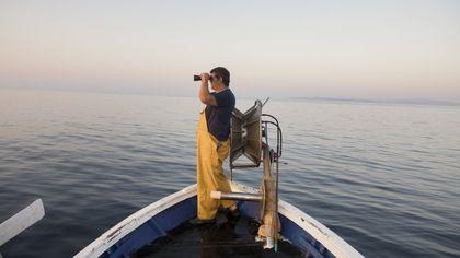 Dalle Egadi a Zacinto, storie di pesca (sostenibile) e di mare in mostra a Roma