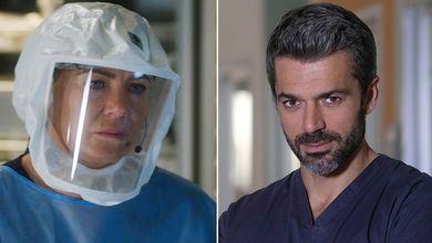 No, Luca Argentero non è Meredith