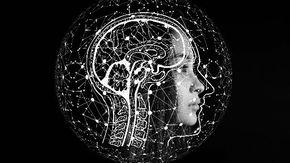 Catturata l'impronta del cervello